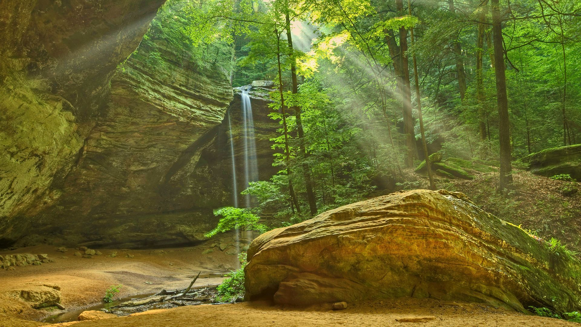 The Nests in Hocking Hills